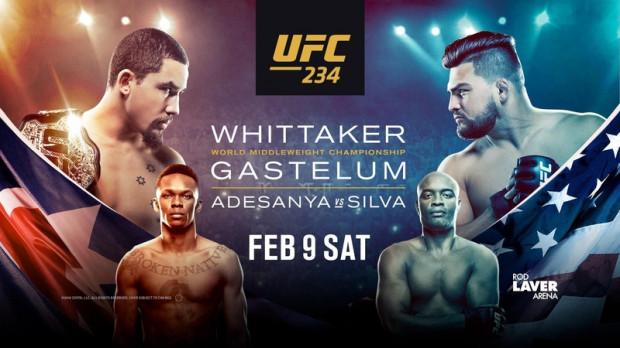UFC 234 fight card
