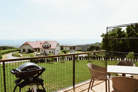 Deluxe suite (terrace)